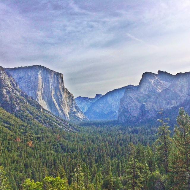 Yosemite Valley - Photo by Crista Scott
