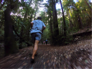 Running in the Shadows of Giants: A Woodside 50K Race Report by Michelle Evans