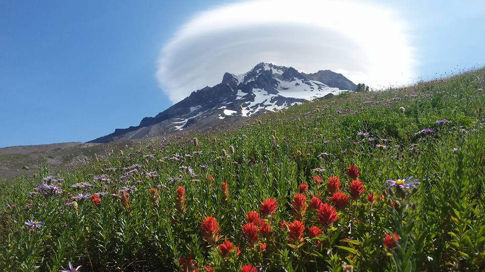 Timberline Trail around Mt Hood in Oregon - Photo by Todd Evans