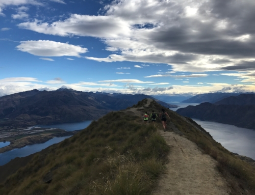 Trail Destination: New Zealand