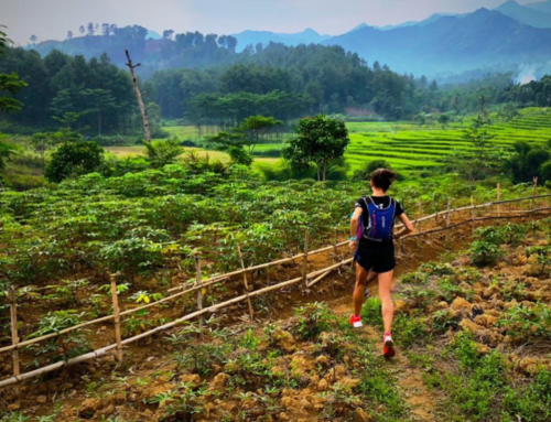 Your First Trail Race: Top 5 Tips for Any Distance
